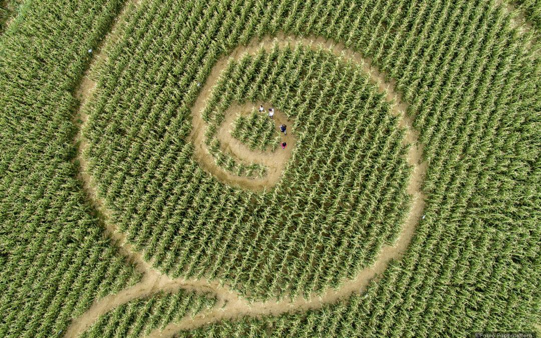 'Mosaici di mais': apparsi due nuovi labirinti nella Bassa Friulana