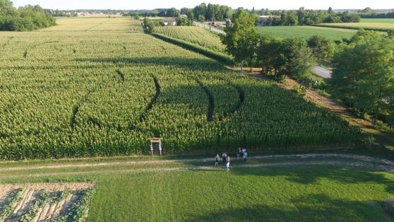 Nel bel mezzo della campagna spuntano tre labirinti disegnati nel mais