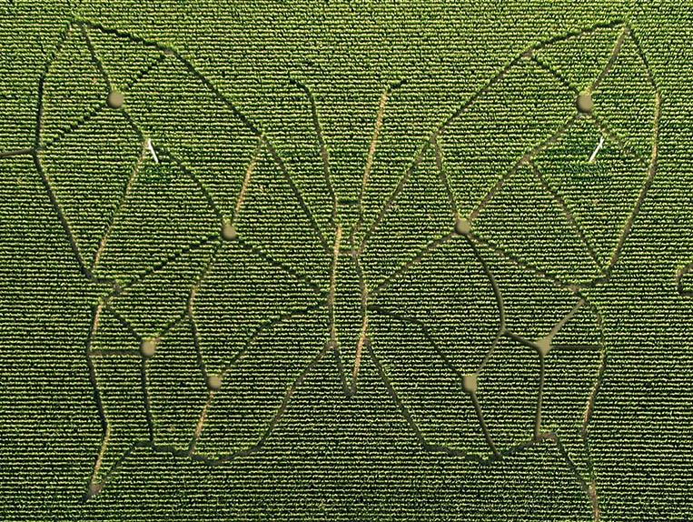 Una farfalla di 4 ettari per il labirinto di Bagnaria